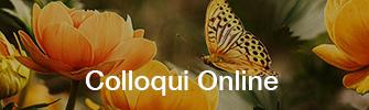 Colloqui online